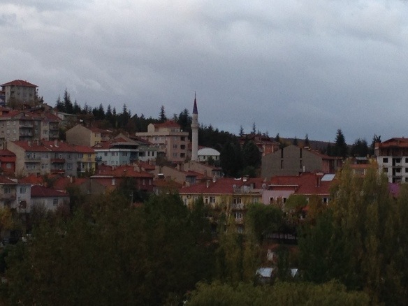 The village of Eğrigöz, near Emet.