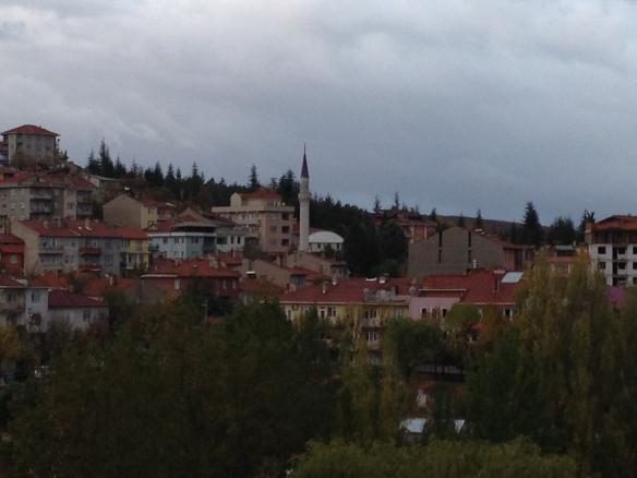 The village of Eğrigöz, near Emet.